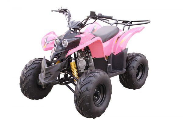 Kandi MDL-GA003-1 110CC ATV