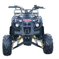 Kandi MDL-GA003-2 110CC ATV