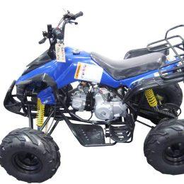 Kandi MDL-GA004-3 110CC ATV