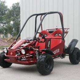 Coolster 125CC Go Kart