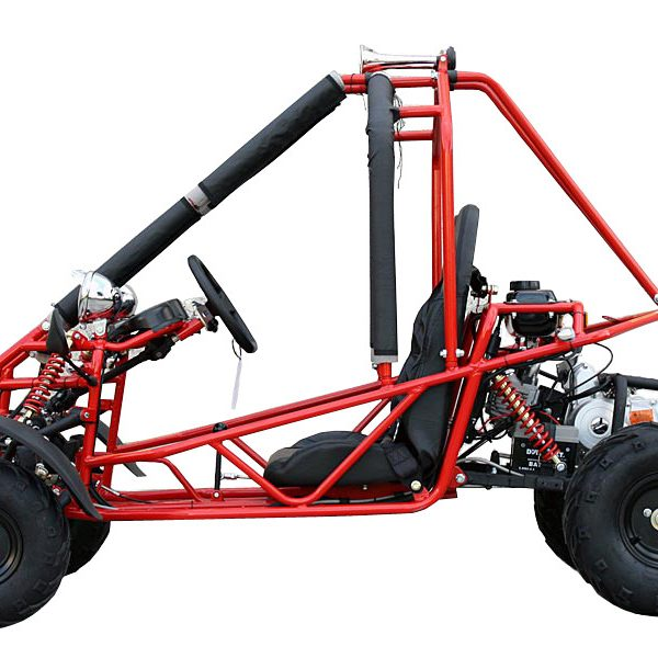 2 Seated 110cc Gas Go Kart Dune Buggy W Electric Start