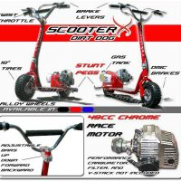ScooterX 49cc Dirt Dog Gas Scooter