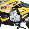 250cc Manual Steet bike MC-D250RTA