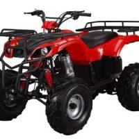 Kandi ATA-250D 250CC Adult ATV