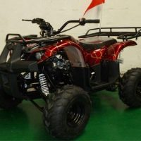 Roketa ATV-29K-110 cc kids ATV