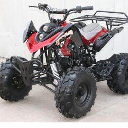 Roketa ATV-94Q-125 cc ATV