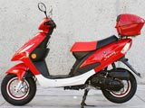 "50cc 4 stroke Style 10"" MC_JL8 gas scooter FREE Trunk & Windshield"
