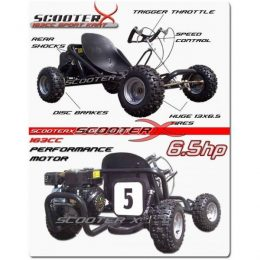 ScooterX Sport kart 6.5hp Off Road Go Kart