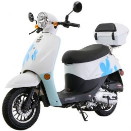 Sunny powersports 50cc 4-stroke MC-H50-T41gas scooter