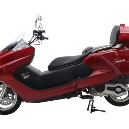 300cc Deluxe Touring MC-D300E gas scooter