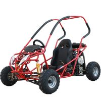 110cc Single seat auto with reverse GK-D110