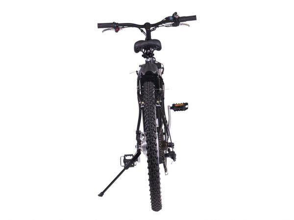 Alpine Trails Electric Mountain Bike
