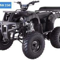 Rhino 250cc Utility ATVs